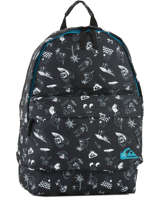 Backpack 1 Compartment Quiksilver Gray youth access QYBP3512