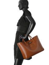 Longchamp Roseau Handbag Brown-vue-porte