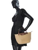 Longchamp Sacs porté main Noir-vue-porte