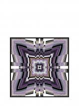 Longchamp Scarves Violet