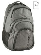 Backpack 1 Compartment + 15'' Pc Dakine Gray street packs 8130-057