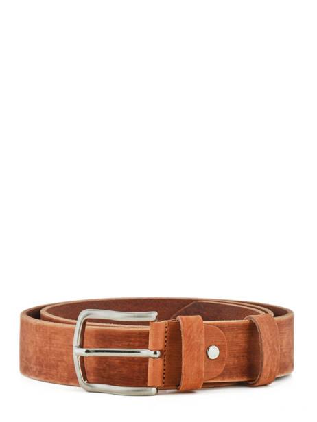 Men's Belt Petit prix cuir Brown jean 1583-40