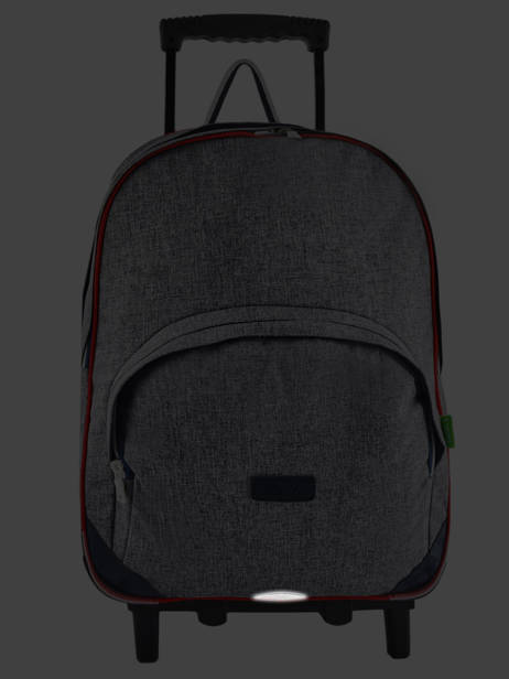 Wheeled Backpack 2 Compartments Tann's Gray les chines 73138 other view 6