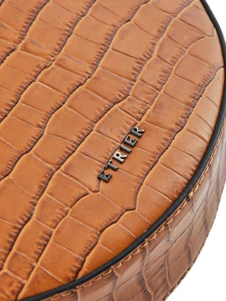 Large Shoulder Bag Darwin Leather Etrier Brown darwin EDAR07 other view 1
